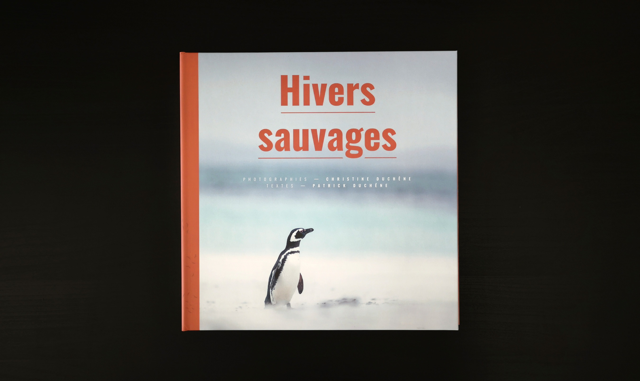 Hivers sauvages 3