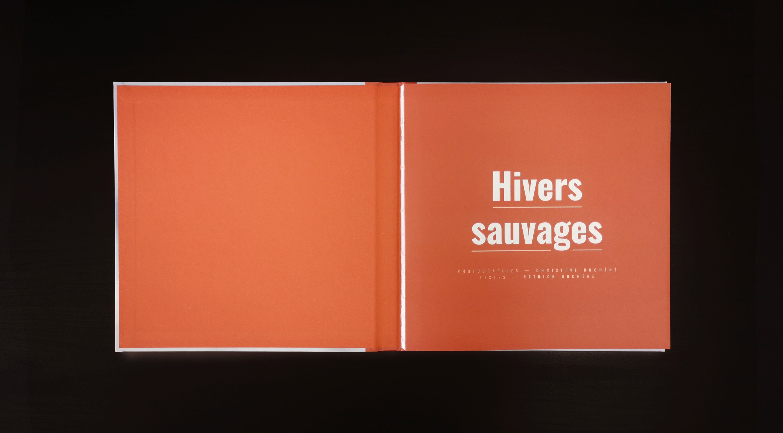 Hivers sauvages 4