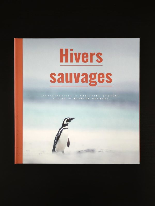 Miniature Hivers sauvages